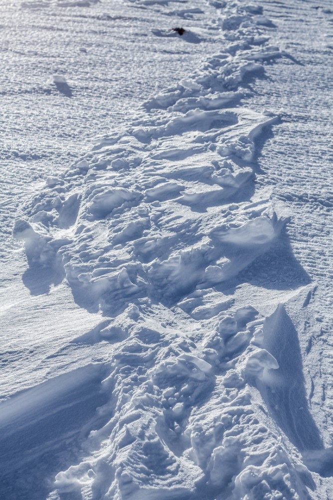 Our trail from yesterday.Compacted down the loose snow around the steps has been blown away.