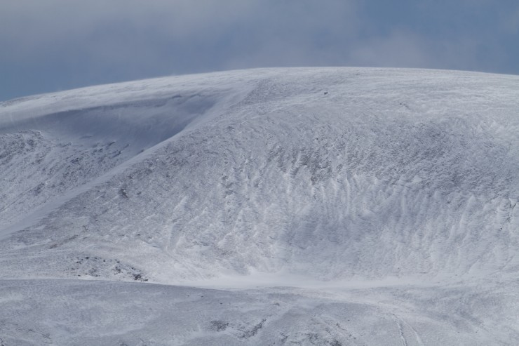 W aspect Glas Maol. walkers about to get onto the plateau.