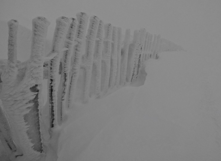 Ski fences with new accumulations.