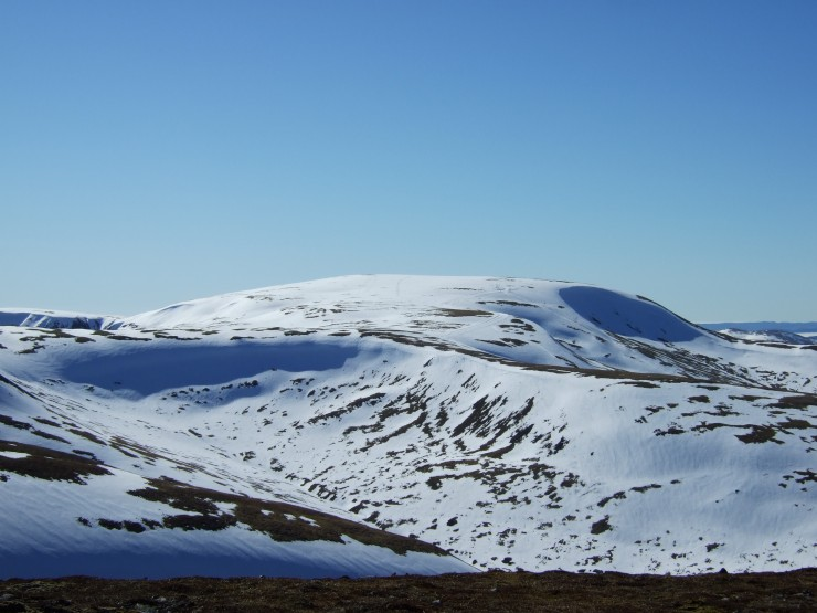 Good cover above 800m. Looking from Carn an Tuirc to Glas Maol