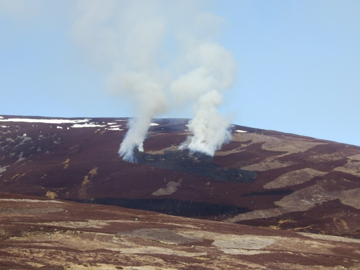 Fairly spectacular heather burning on Morrone today. (NB - Deliberate and controlled)