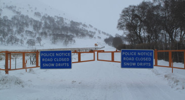 Back to winter.